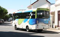 Lignes de bus et petit train