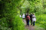 randonnée association marche nordique nature bien être