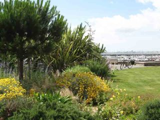 Plantes et jardins du bord de mer